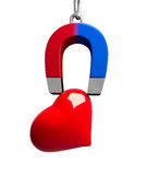 Magnet heart Stock Image