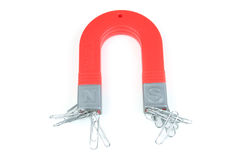 Magnet and paperclips. Magnet attracting a group of paperclips stock photography