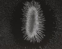 Magnetfeld eines Kuhmagneten Lizenzfreie Stockfotos