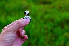 Magnetic Fidget Spinner Stock Photo