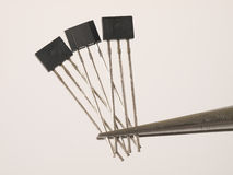 Magnetic field sensors. In tweezers Royalty Free Stock Image
