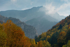 Magnificent autumn carpet in The Rhodope montains, Bulgaria Royalty Free Stock Photos