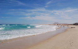 Magnificent beach. Playa Corralejo on Fuerteventura, Canaries. One of the most beautiful beaches in the world Stock Photography