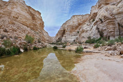 Magnificent canyon and creek Stock Photo