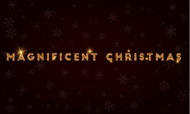 Magnificent Christmas. Royalty Free Stock Photography