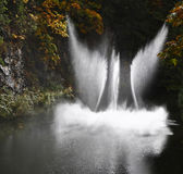 Magnificent Dance Fountain In Butchard-garden Royalty Free Stock Photography