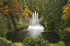 Magnificent dance fountain on island Vancouver Stock Photo