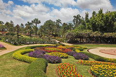 Magnificent flower beds Royalty Free Stock Images