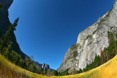 Magnificent glade  in valley Yosemite park Stock Photos