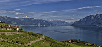 Magnificent landscape of Lavaux in Switzerland Stock Photos