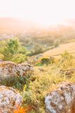 The magnificent landscape of the rocks overgrown with green grass and alight with the sunset. The magnificent landscape of the rocks overgrown with green grass Royalty Free Stock Photography