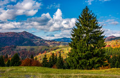 Magnificent mountainous landscape in autumn Royalty Free Stock Images