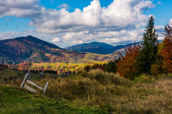 Magnificent mountainous rural landscape in autumn. Wooden fence in front of a coniferous and deciduous trees with red foliage on grassy hill. great sunny Stock Images