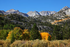 Magnificent multicolored autumn in the mountains Royalty Free Stock Image