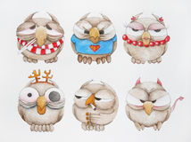 Magnificent owls. Hand painted set of  owls in different images Stock Photo