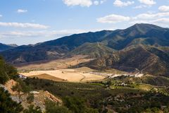 Magnificent panorama of surrounding olive groves Royalty Free Stock Images