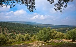 Magnificent panorama of Villanueva De Algaidas Stock Photography