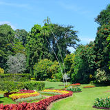 Magnificent park with flower beds, lawns and trees Royalty Free Stock Photo