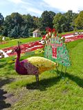A magnificent peacock sculpture in a park made of flowers against the background of beautiful flower beds and green royalty free stock photos