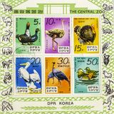 Magnificent postage stamps. View of a page of postage stamps with pictures of Birds stock photo