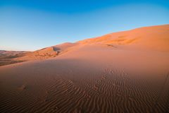 Magnificent sandy waves on dunes in desert. At hot and windy morning Stock Images