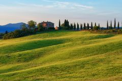 Magnificent spring landscape at sunrise.Beautiful view of typical tuscan farm house, green wave hills. Stock Image