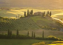 Magnificent spring landscape at sunrise.Beautiful view of typical tuscan farm house, green wave hills. Royalty Free Stock Photos