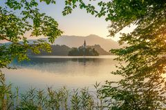 Magnificent sunrise over Lake Bled, Slovenia at summer morning stock photography