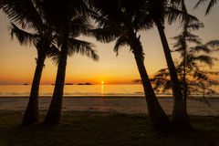 Magnificent sunset on the tropical island. Royalty Free Stock Photo
