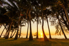Magnificent sunset on the tropical island. Koh Chang. Stock Photography
