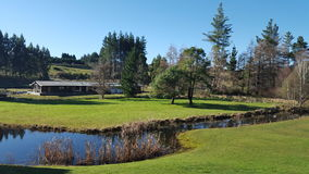 Magnificent tranquil New Zealand landscape with river, trees. And lawns in Ohakune Royalty Free Stock Photo