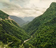 Magnificent view on the green mountain Royalty Free Stock Photography