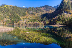 Magnificent view in Jiuzhaigou national park Stock Photography