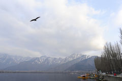 A magnificent view of Kashmir near the lake at Srinagar Royalty Free Stock Photos