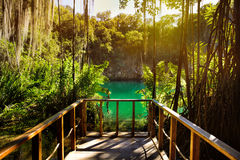 Magnificent view of the mystery cave in the jungle, with sun ray. S  and wooden bridge in the underground lake. The 3 Eyes National Park Los Tres Ojos in Santo Stock Image