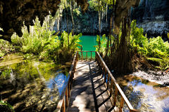 Magnificent view of the mystery misty cave in the jungle, with s. Un rays  and wooden bridge in the underground lake. The 3 Eyes National Park Los Tres Ojos in Stock Photos