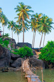 Magnificent view of the palm trees and rocky Royalty Free Stock Image