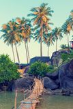 Magnificent view of the palm trees and rocky shore. Tinted Royalty Free Stock Image