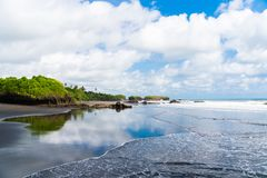 Magnificent view of the sky of palm trees and the shore of a beautiful island, indonesia, bali stock photography