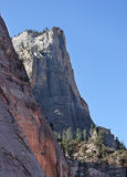 Magnificent white cliff of Zion National. Park royalty free stock photos