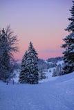 Magnificent winter landscape Stock Image