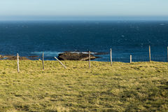 Magnificient view over the southern ocean, New Zealand Royalty Free Stock Photography