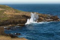 Magnificient widok nad południowym oceanem, Nowa Zelandia Obrazy Stock