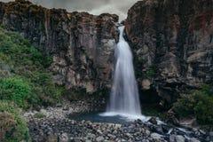 Magnificient wody spadek, Nowa Zelandia fotografia royalty free