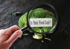 Magnified food safety. Hand with magnifying glass examining food safety label Stock Photo