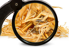 Magnifier enlarges a needle in haystack Royalty Free Stock Images