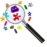 Magnifier and germs Stock Photography