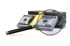 Magnifier and money on white background Stock Photography