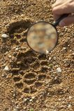 Magnifier, trekkers boot print Stock Photo