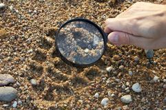 Magnifier, trekkers boot print Stock Photography